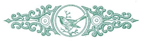 blog divider blue bird