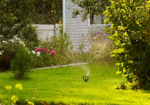 Guest Post:  Top tips for getting your lawn looking just like new