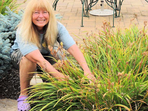 garden clean up 2