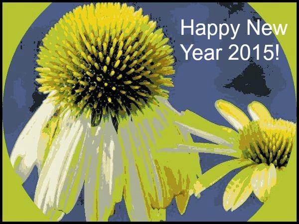 coneflower yellow artistic